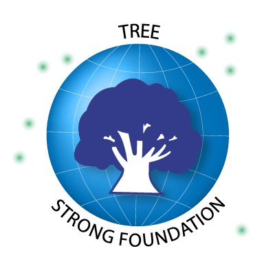 Tree. Strong Foundation.